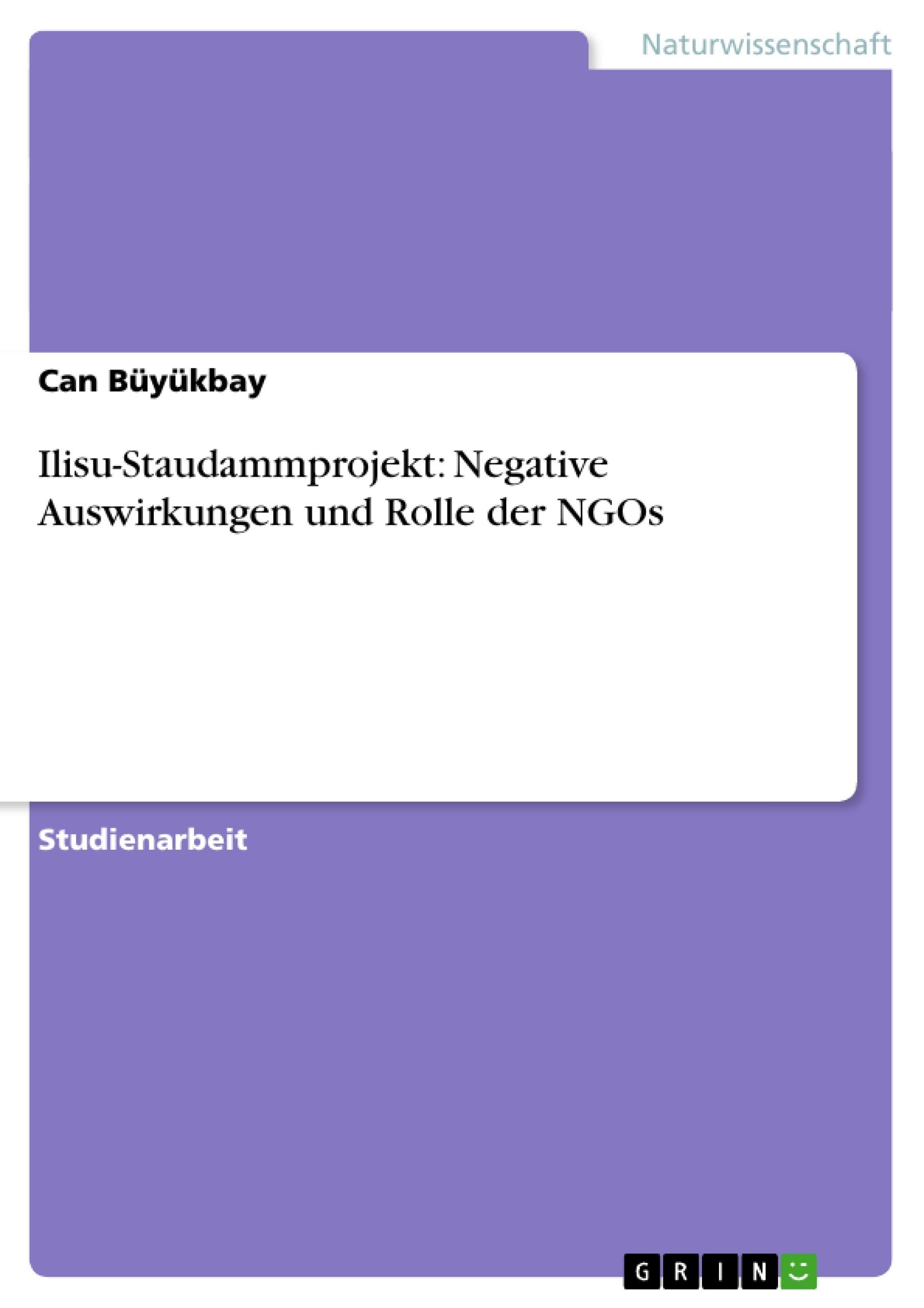 Titel: Ilisu-Staudammprojekt: Negative Auswirkungen und Rolle der NGOs