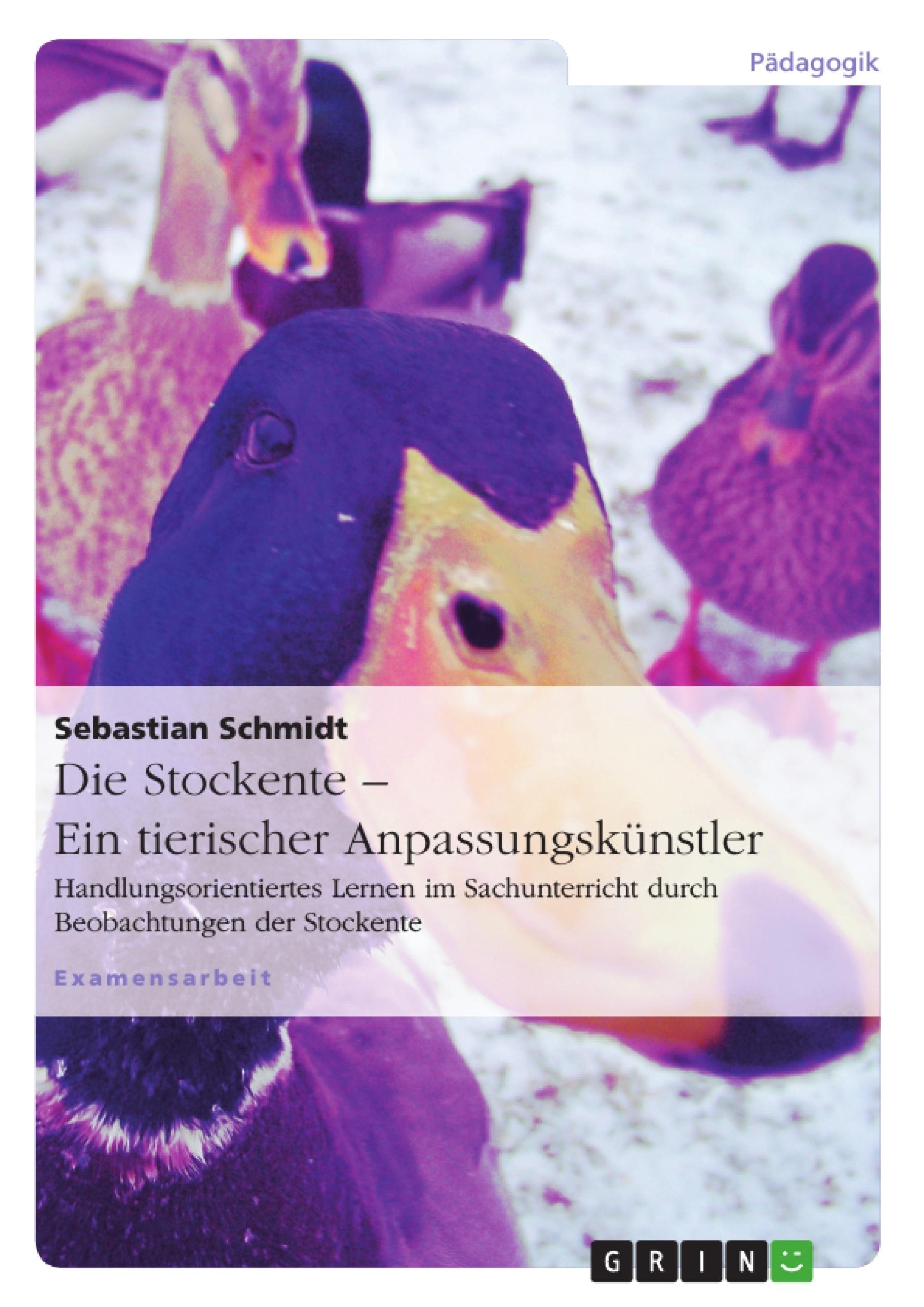 Titel: Die Stockente – ein tierischer Anpassungskünstler