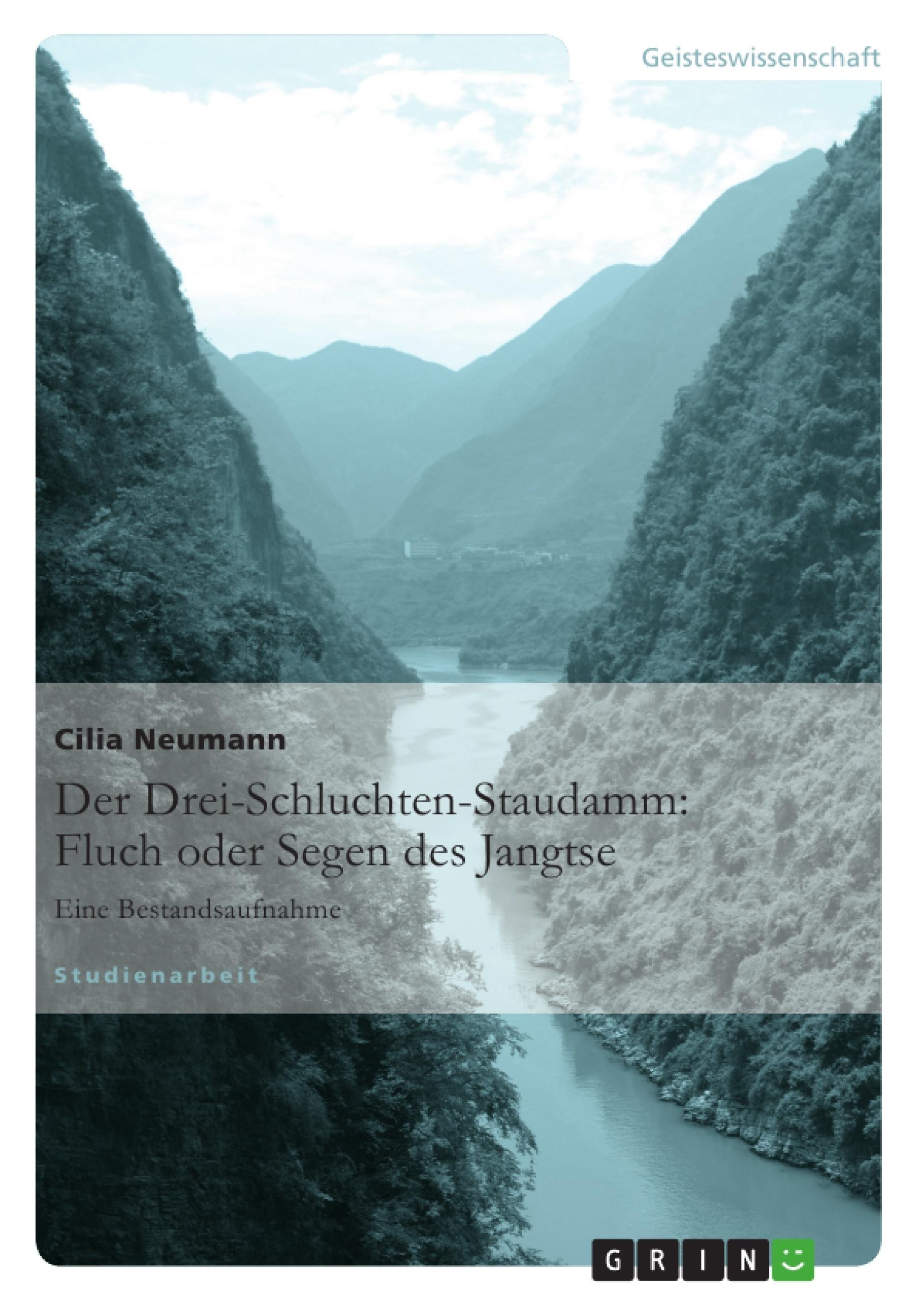 Titel: Der Drei-Schluchten-Staudamm: Fluch oder Segen des Jangtse