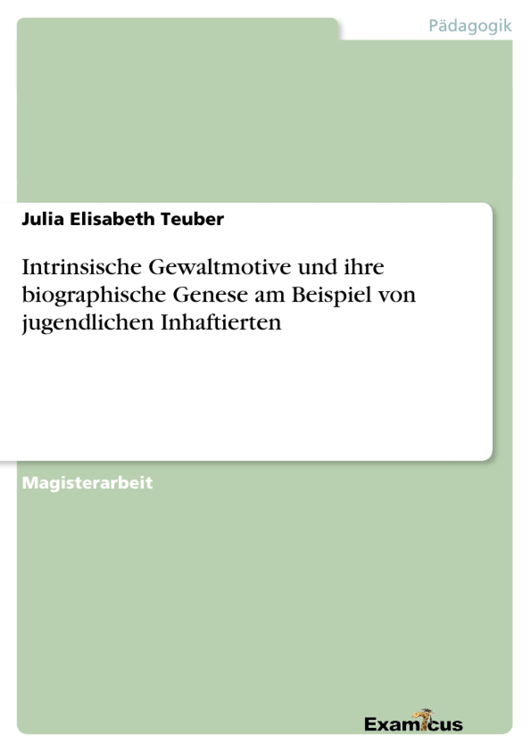 Titel: Intrinsische Gewaltmotive und ihre biographische Genese am Beispiel von jugendlichen Inhaftierten