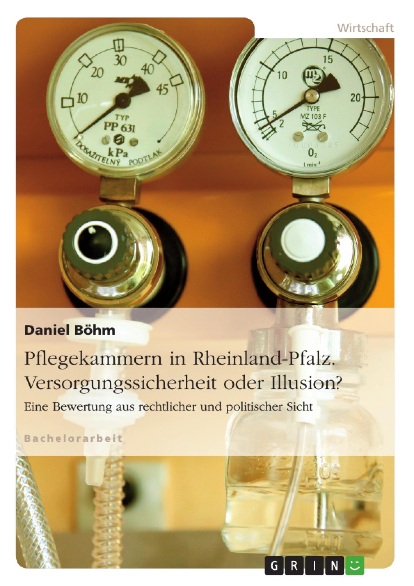 Titel: Pflegekammern in Rheinland-Pfalz. Versorgungssicherheit oder Illusion?
