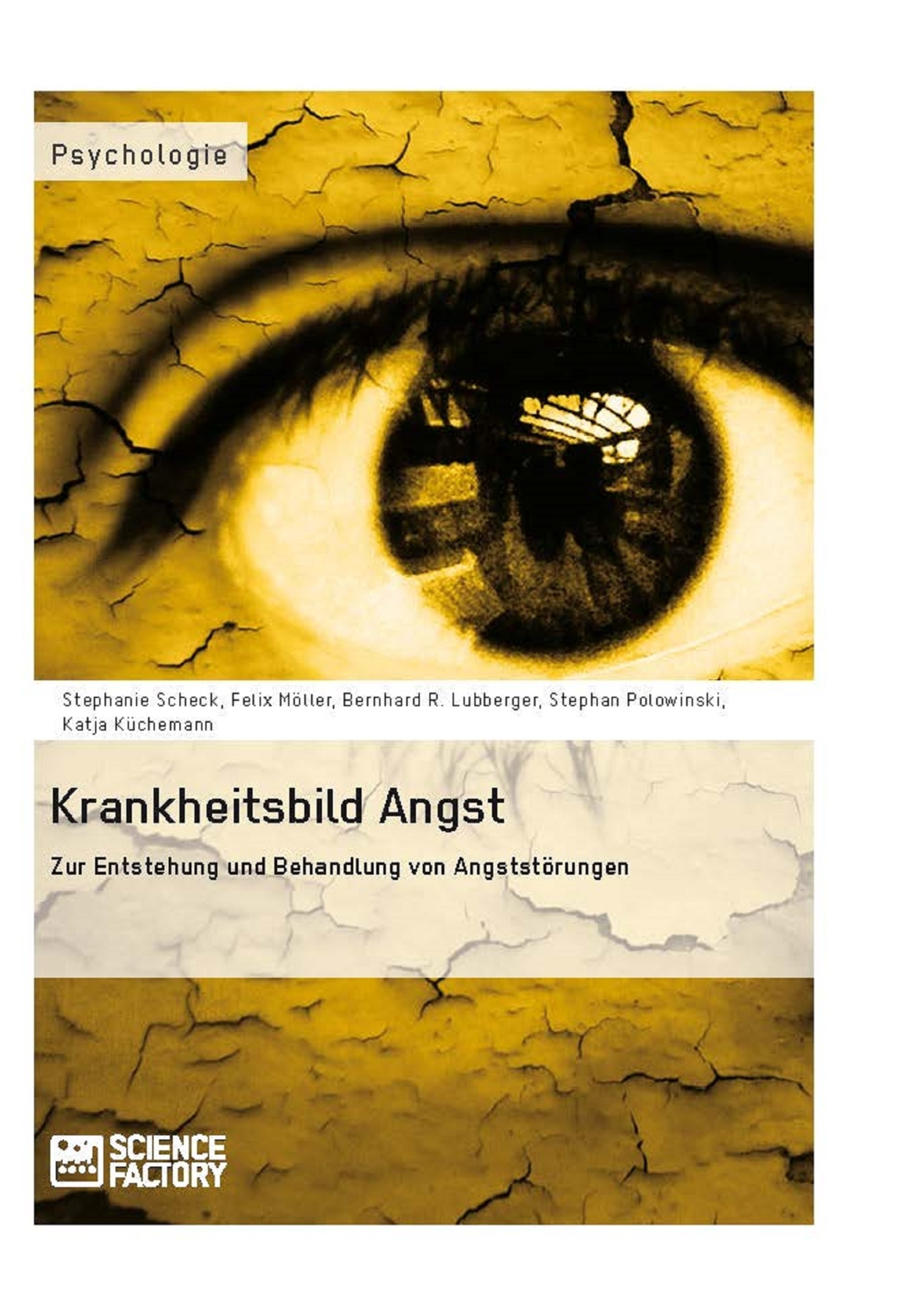 Titel: Krankheitsbild Angst. Zur Entstehung und Behandlung von Angststörungen