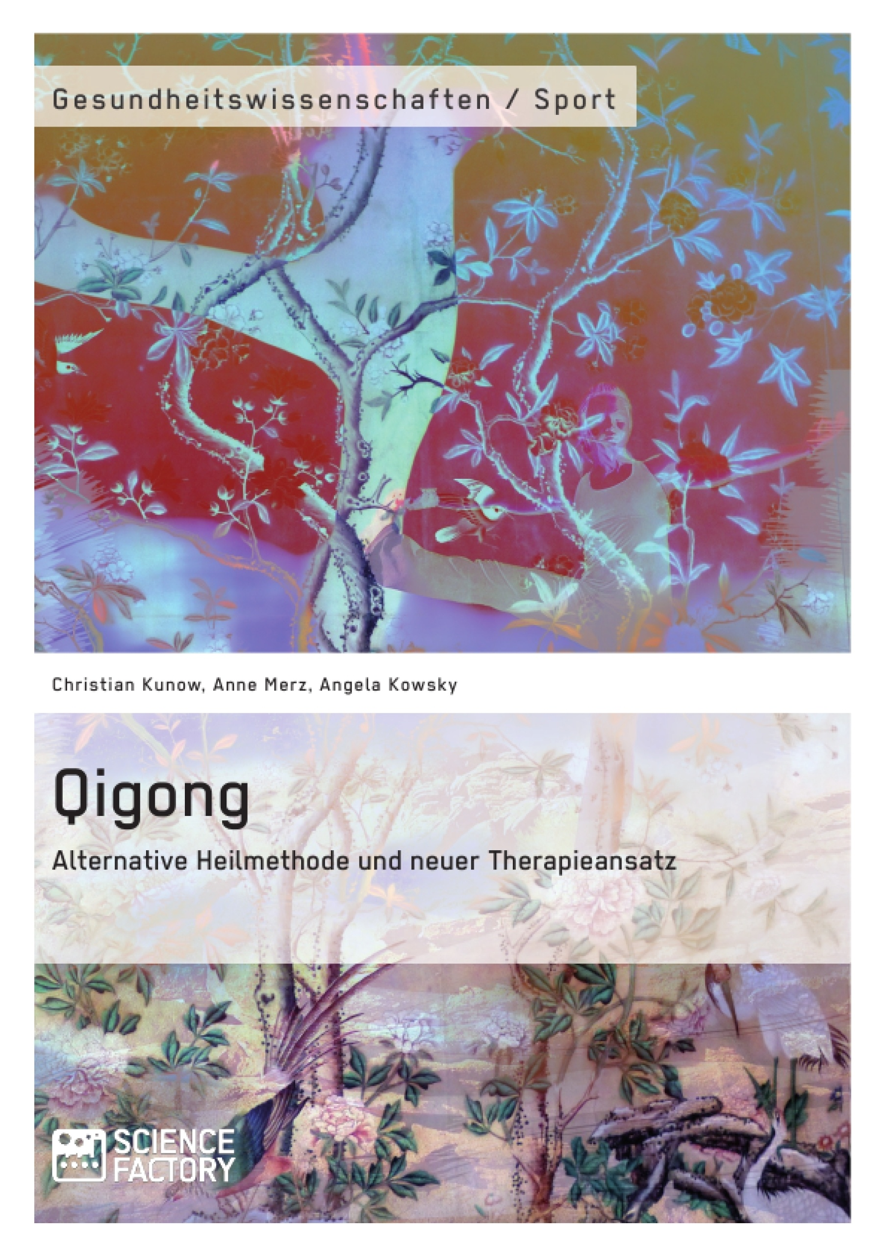 Titel: Qigong – Alternative Heilmethode und neuer Therapieansatz