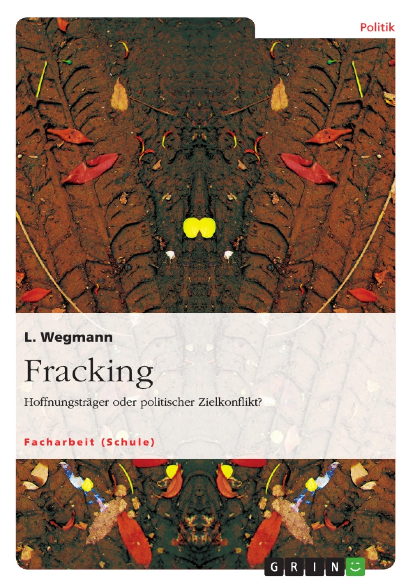 Titel: Fracking. Hoffnungsträger oder politischer Zielkonflikt?