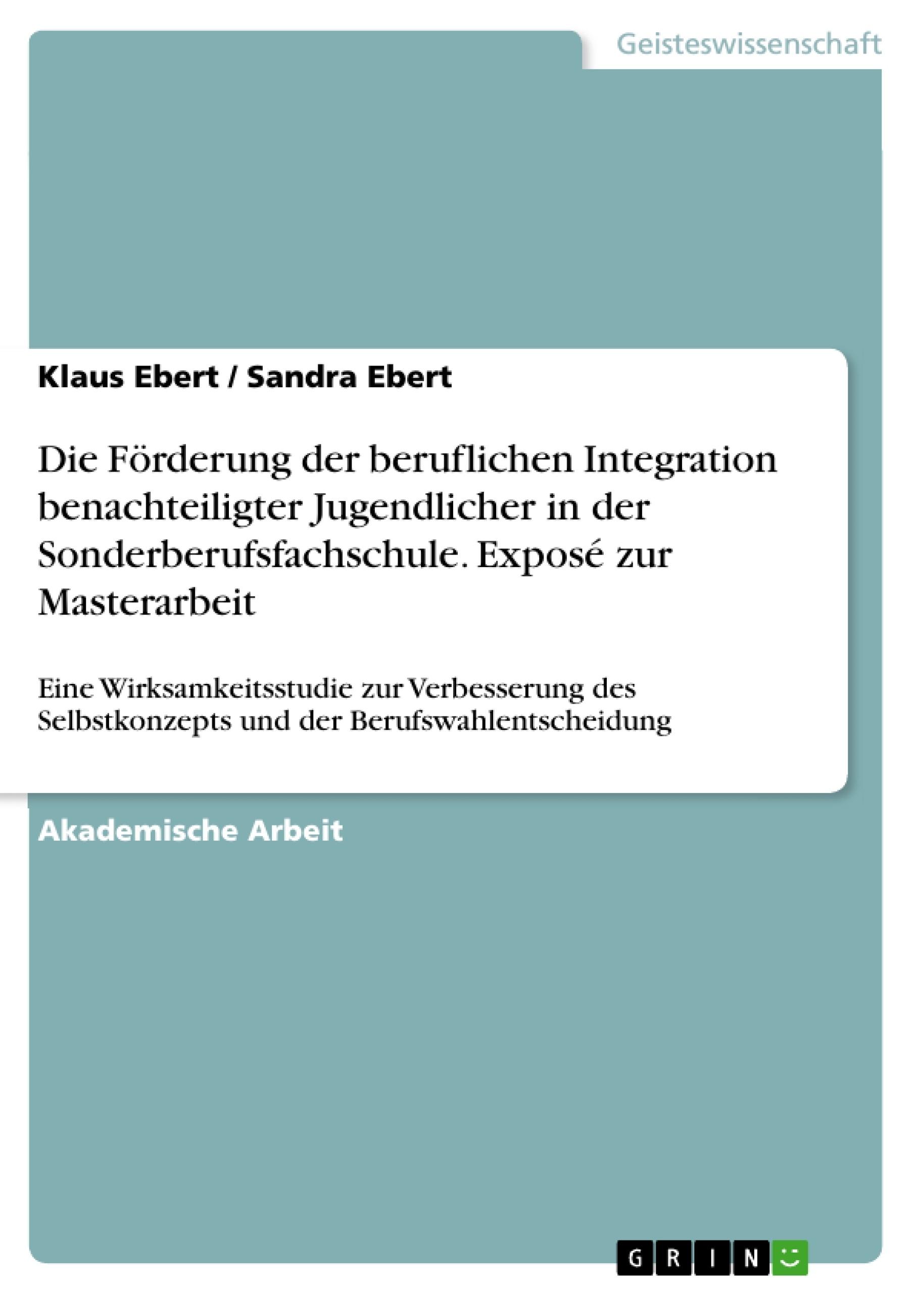 Titel: Die Förderung der beruflichen Integration benachteiligter Jugendlicher in der Sonderberufsfachschule. Exposé zur Masterarbeit