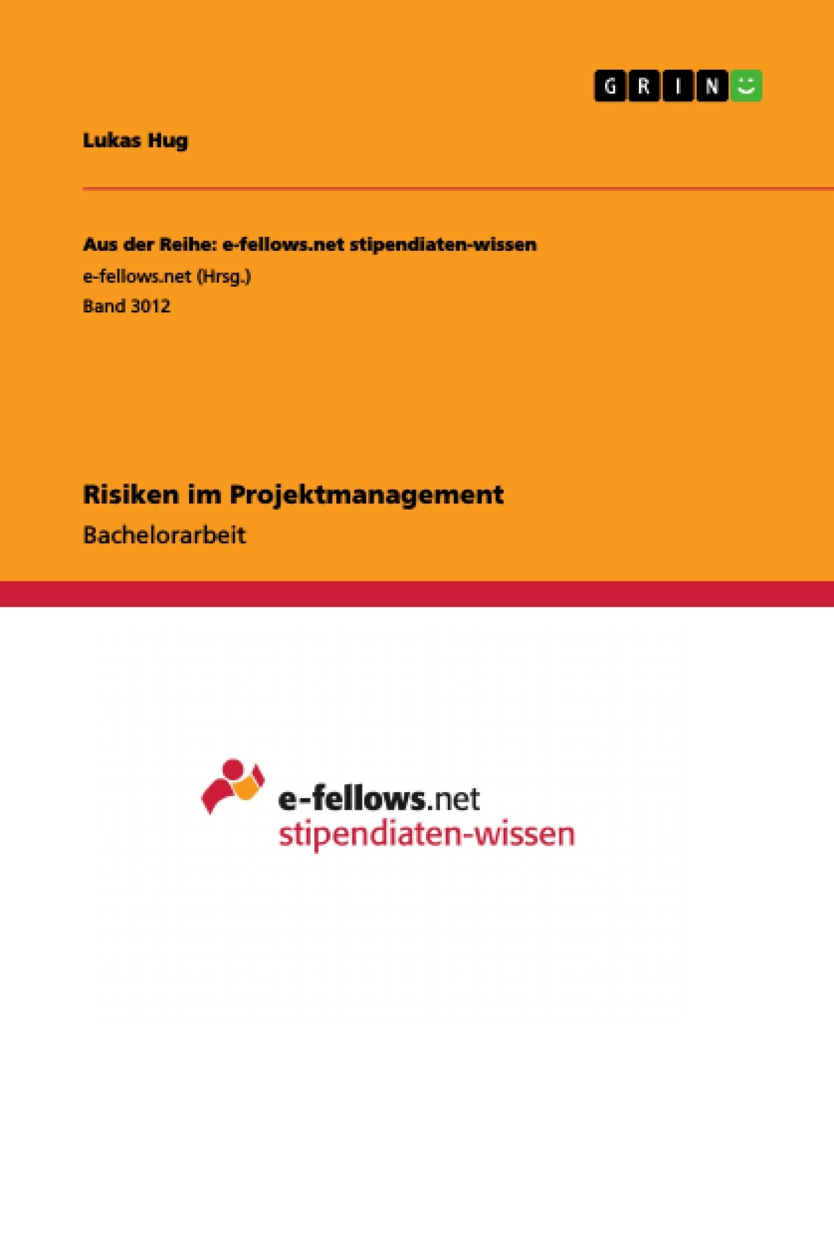 Titel: Risiken im Projektmanagement