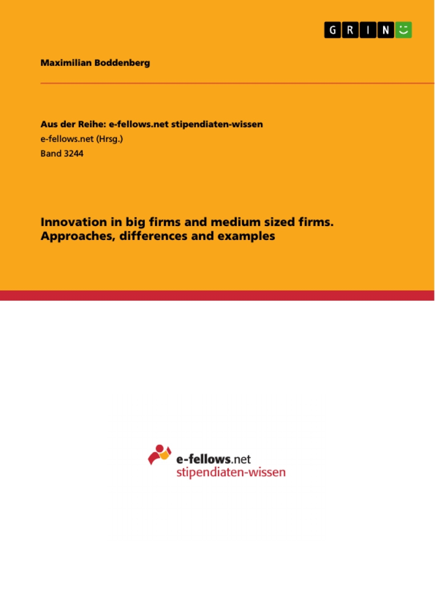 Title: Innovation in big firms and medium sized firms. Approaches, differences and examples