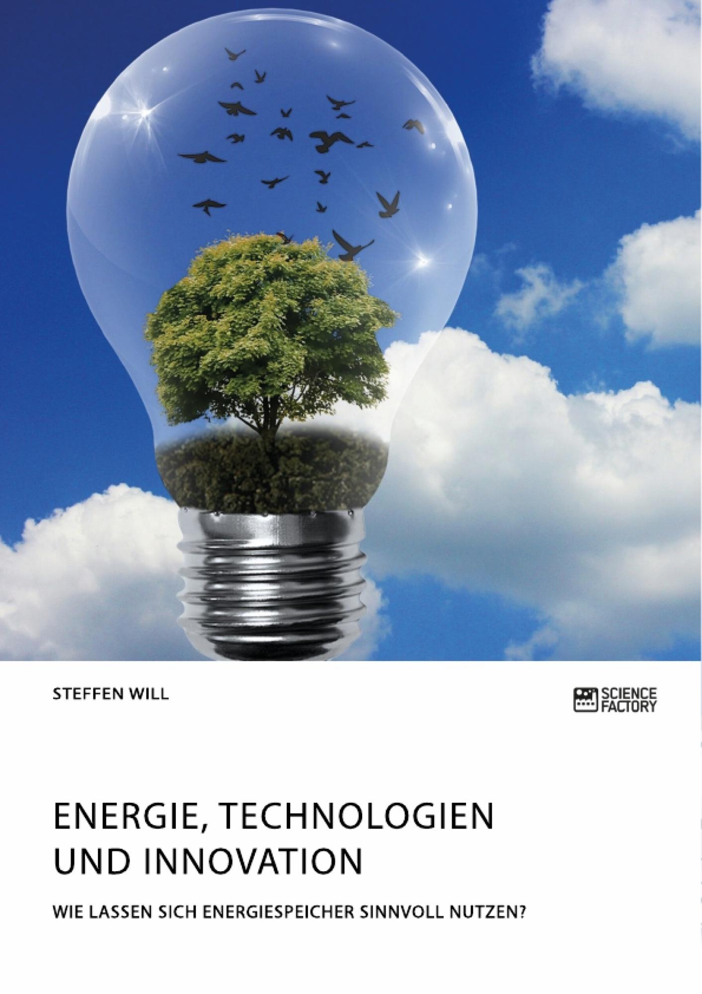 Titel: Energie, Technologien und Innovation. Wie lassen sich Energiespeicher sinnvoll nutzen?
