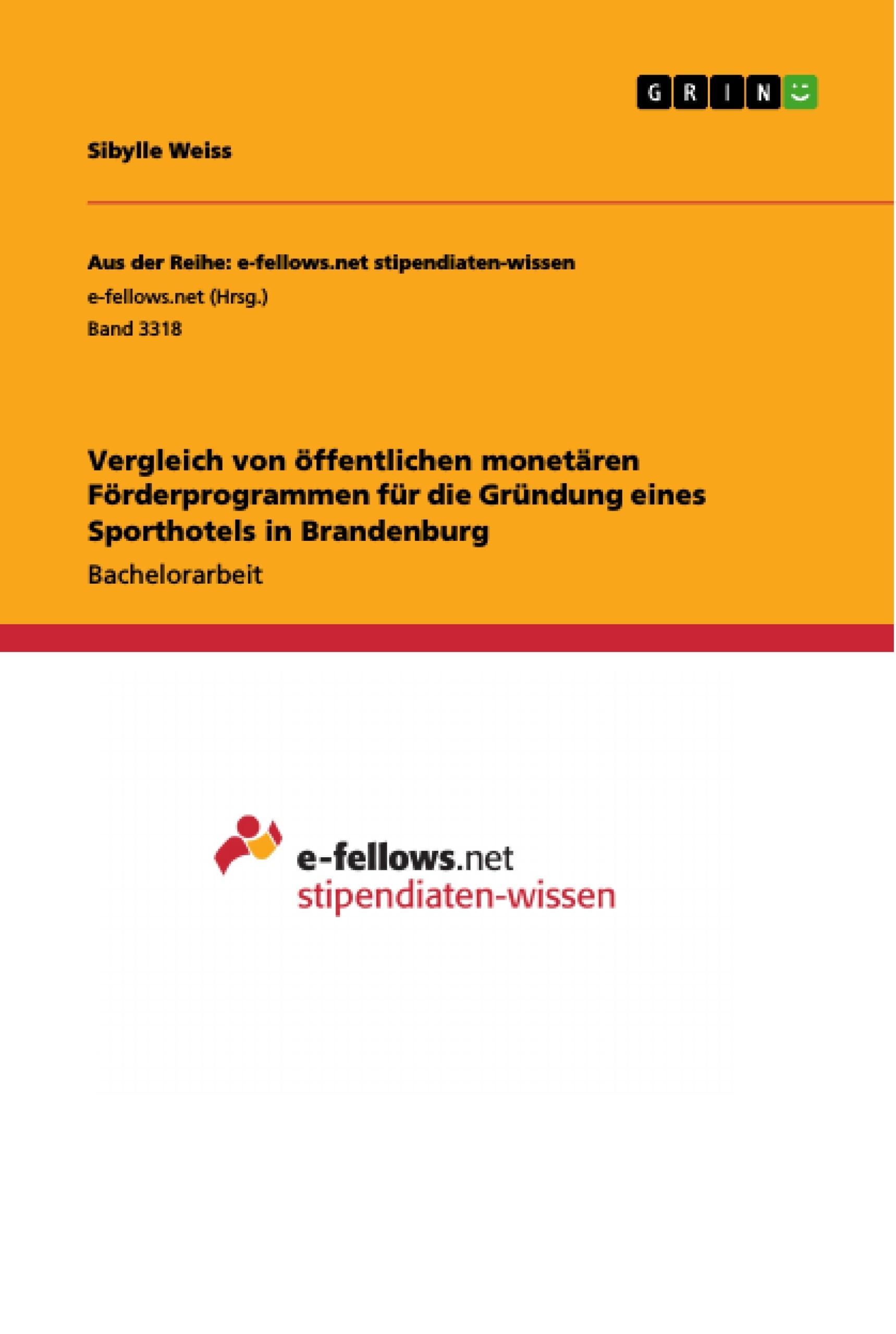 Titel: Vergleich von öffentlichen monetären Förderprogrammen für die Gründung eines Sporthotels in Brandenburg