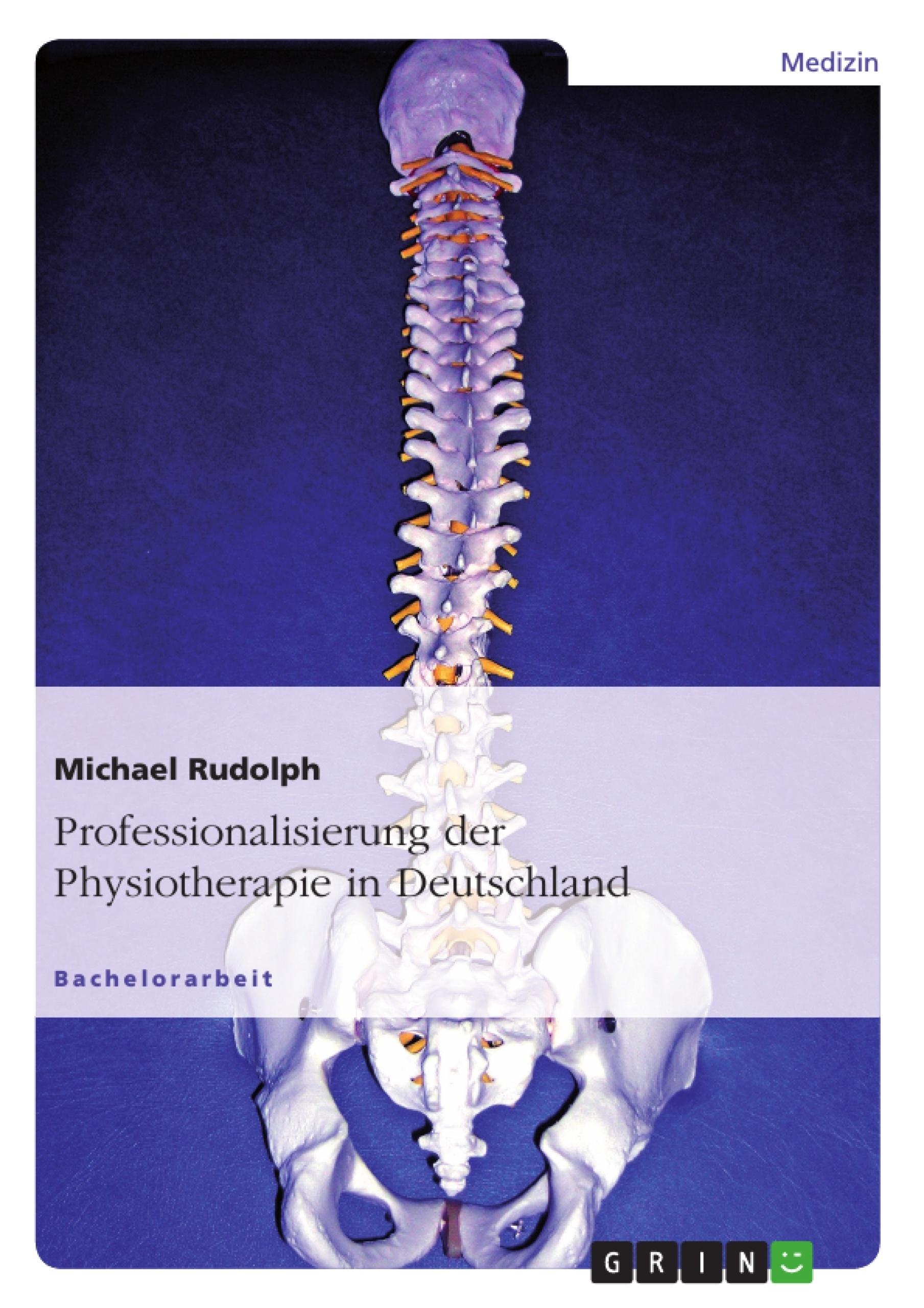 Titel: Professionalisierung der Physiotherapie in Deutschland