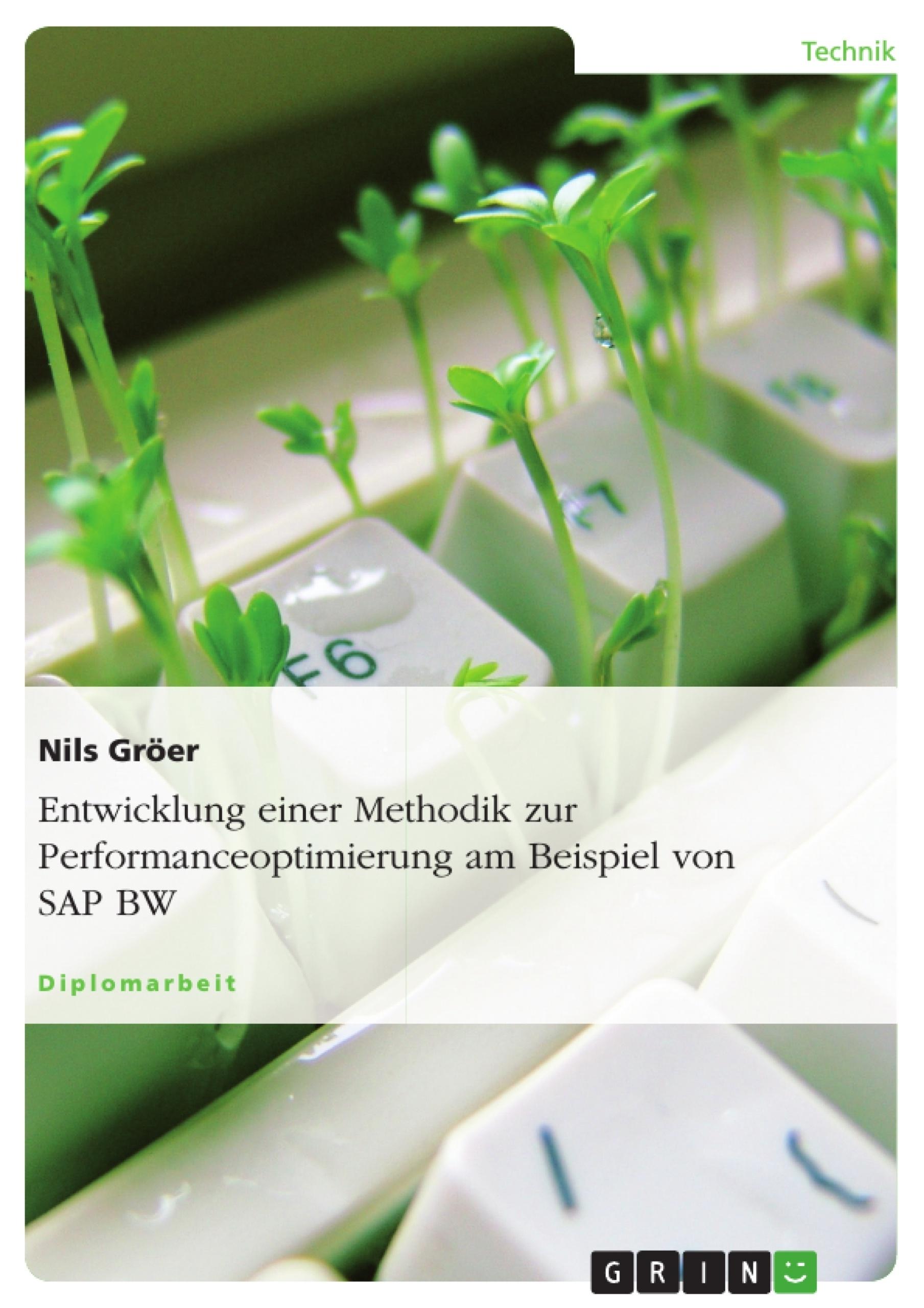 Titel: Entwicklung einer Methodik zur Performanceoptimierung am Beispiel von SAP BW