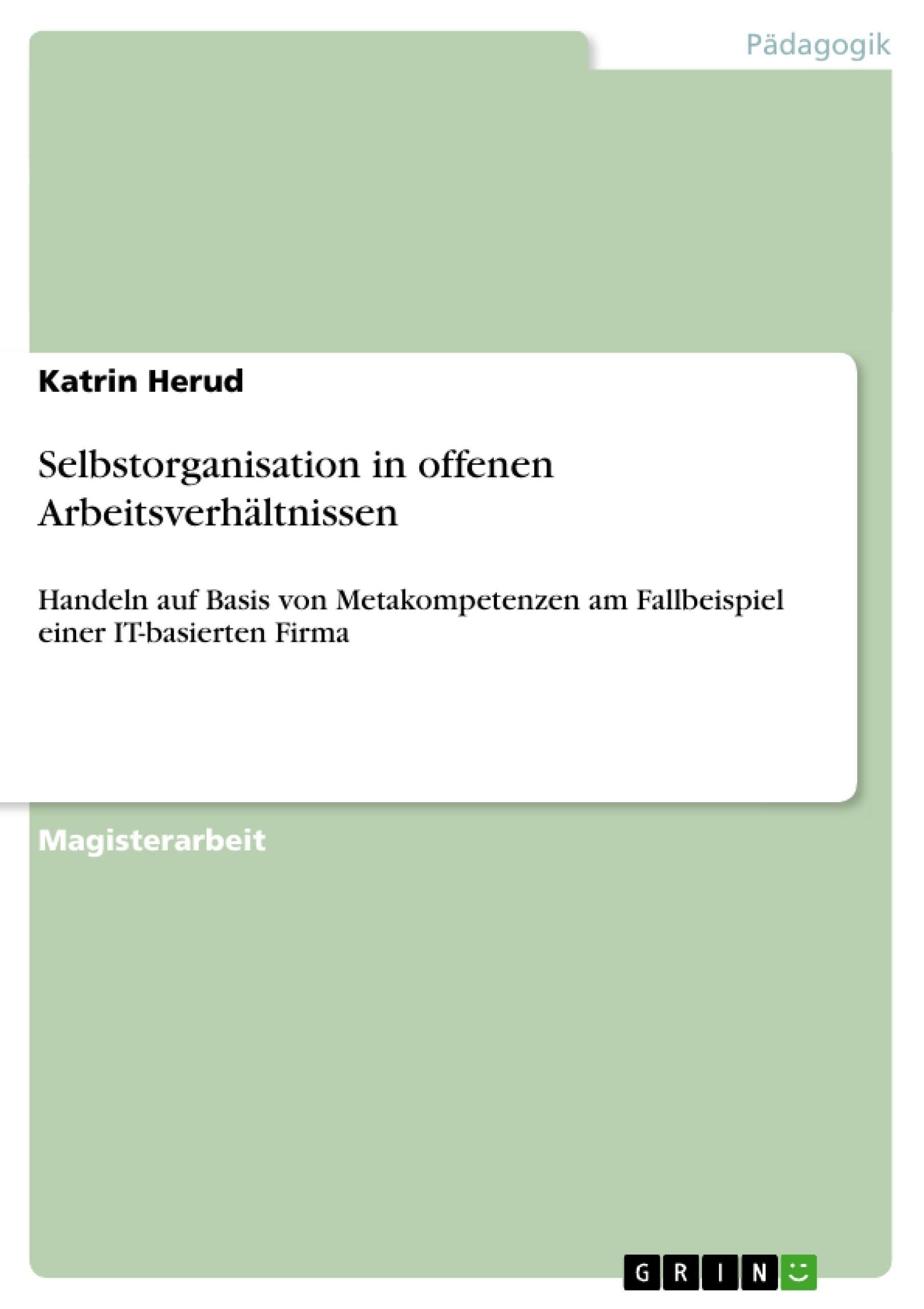 Titel: Selbstorganisation in offenen Arbeitsverhältnissen