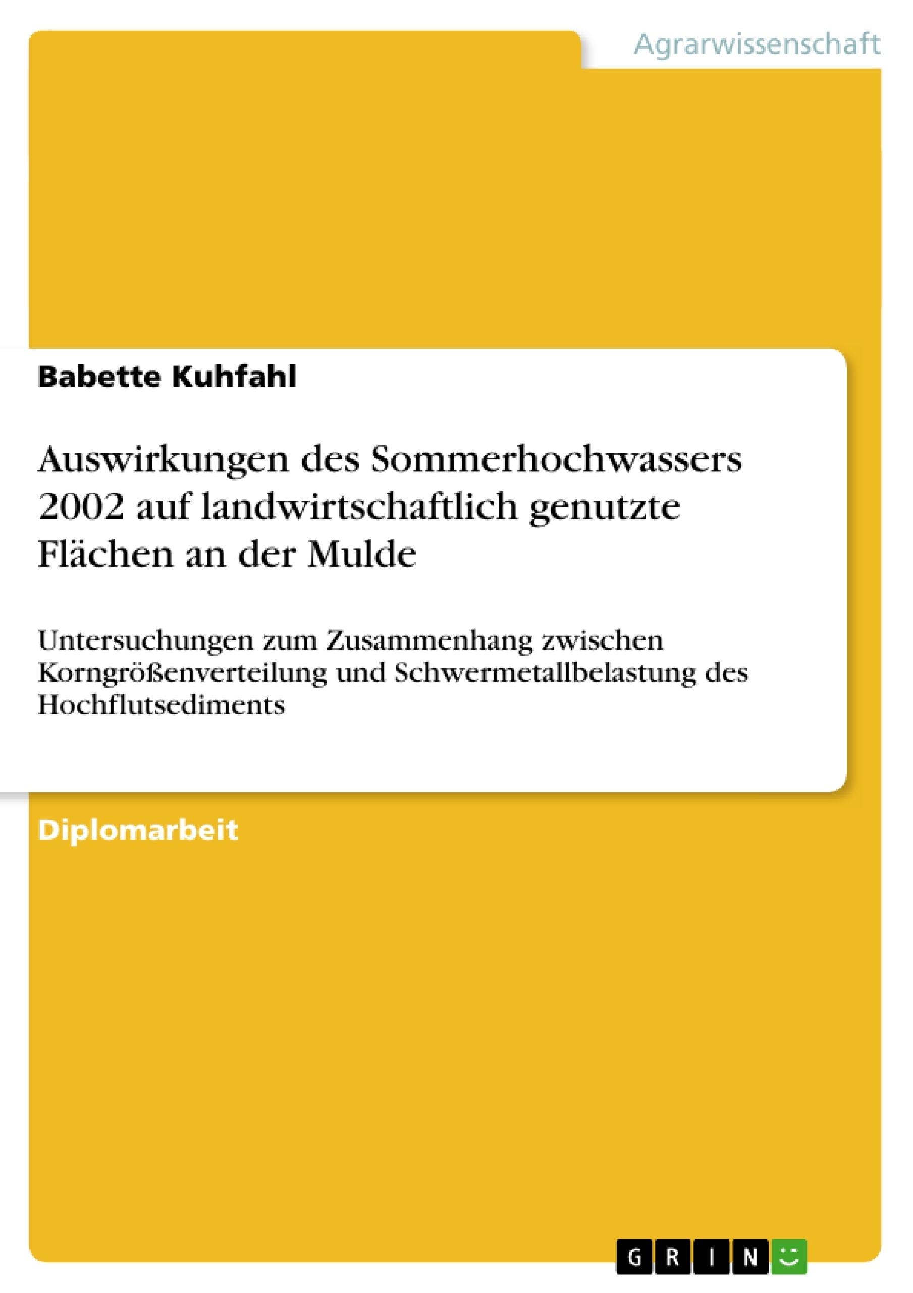Titel: Auswirkungen des Sommerhochwassers 2002 auf landwirtschaftlich genutzte Flächen an der Mulde