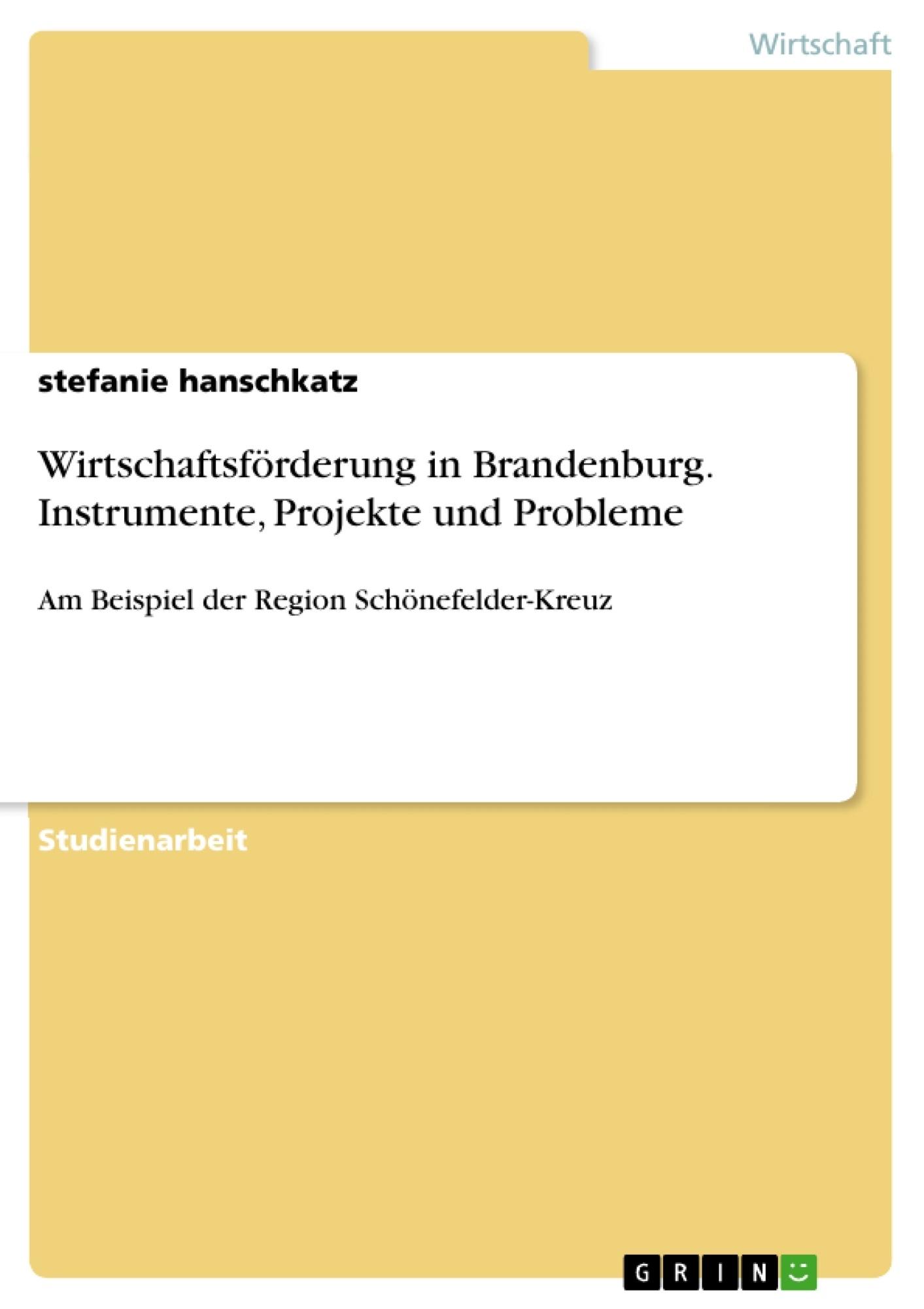 Titel: Wirtschaftsförderung in Brandenburg. Instrumente, Projekte und Probleme
