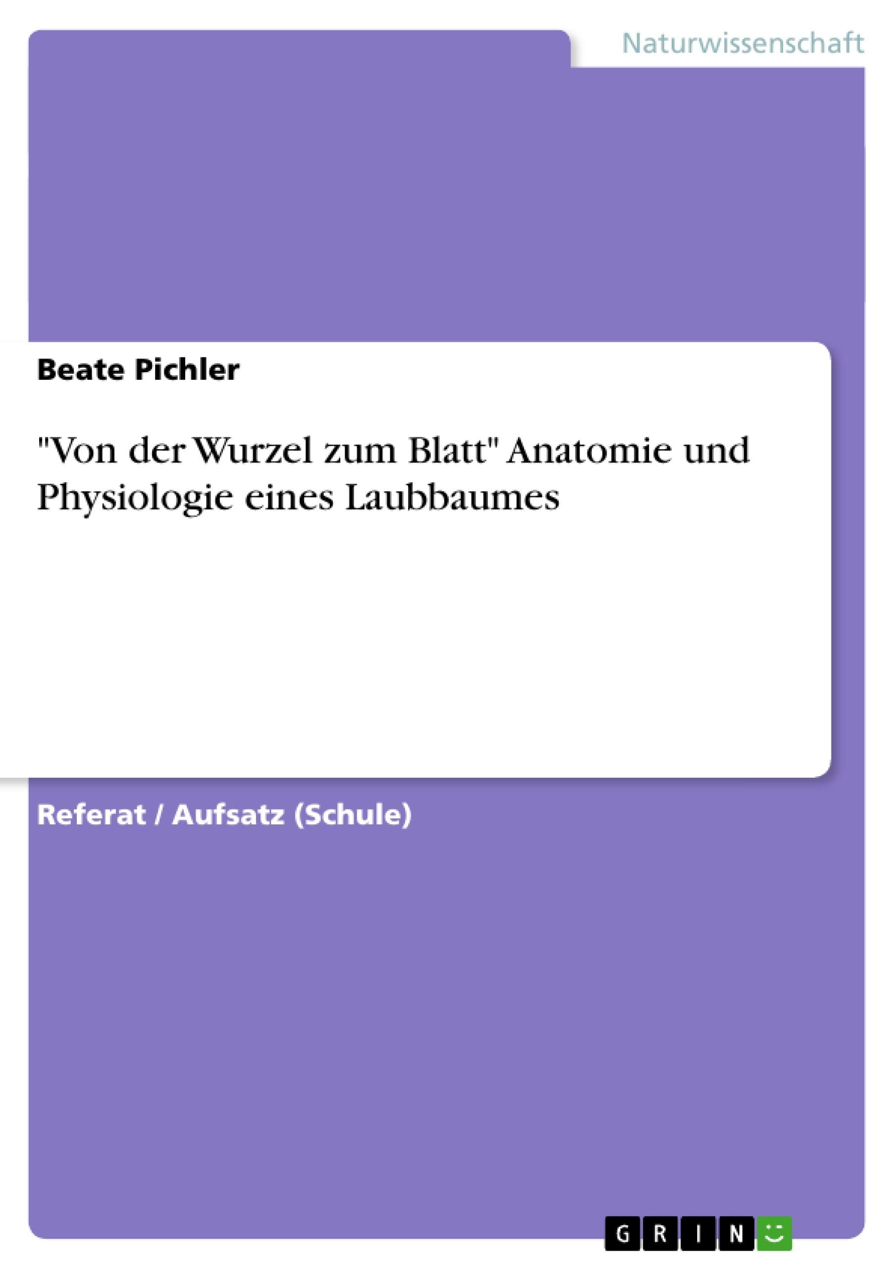 """Titel: """"Von der Wurzel zum Blatt"""" Anatomie und Physiologie eines Laubbaumes"""