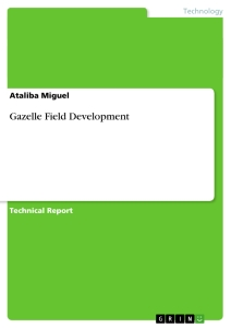 Title: Gazelle Field Development