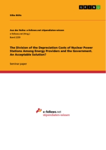 Title: The Division of the Depreciation Costs of Nuclear Power Stations Among Energy Providers and the Government. An Acceptable Solution?