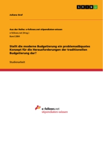 master thesis budgetierung