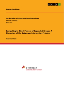 Titel: Computing in Direct Powers of Expanded Groups. A Discussion of the Subpower Intersection Problem