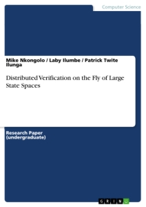 Title: Distributed Verification on the Fly of Large State Spaces