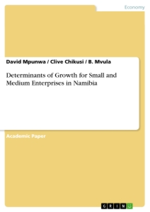 Titel: Determinants of Growth for Small and Medium Enterprises in Namibia