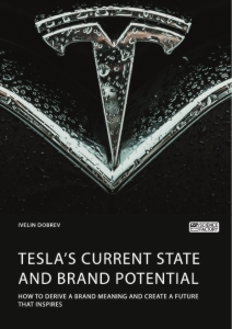 Tesla's current state and brand potential. How to derive a brand meaning and create a future that inspires