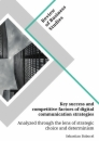 Title: Key success and competitive factors of digital communication strategies analyzed through the lens of strategic choice and determinism