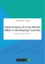 Title: Determinants of Cross-Border M&As in Developing Countries. Investments in the BRICS Countries