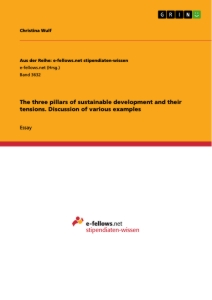 Title: The three pillars of sustainable development and their tensions. Discussion of various examples