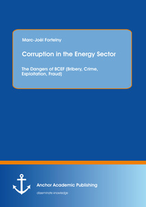 Title: Corruption in the Energy Sector: The Dangers of BCEF (Bribery, Crime, Exploitation, Fraud)