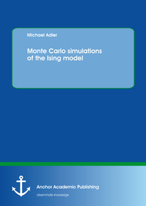 Title: Monte Carlo simulations of the Ising model
