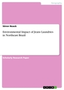 Titel: Environmental Impact of Jeans Laundries in Northeast Brazil