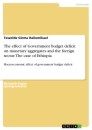 Titel: The effect of Government budget deficit on monetary aggregates and the foreign sector. The case of Ethiopia