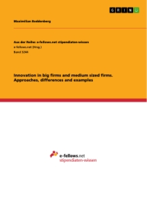 Titel: Innovation in big firms and medium sized firms. Approaches, differences and examples
