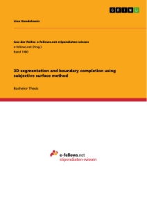 Titel: 3D segmentation and boundary completion using subjective surface method