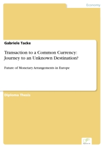 Titel: Transaction to a Common Currency: Journey to an Unknown Destination?