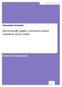 Titel: Electronically highly correlated ternary transition metal oxides