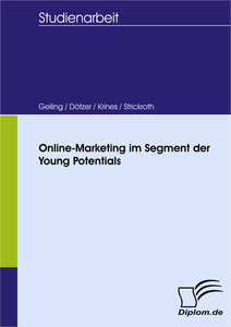Titel: Online-Marketing im Segment der Young Potentials